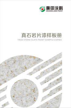 广田涂料-真石岩片漆样板册宣传画册