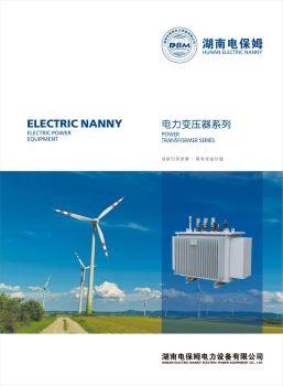 电保姆-电力变压器