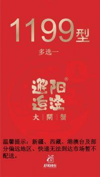 邂逅阳澄1199型 电子杂志制作平台