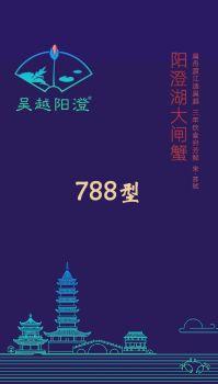 吴越阳澄 788 型,多媒体画册,刊物阅读发布