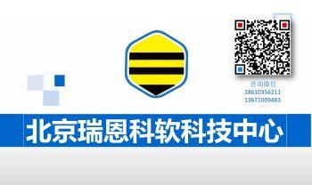 北京瑞恩(BeeLab)电子书