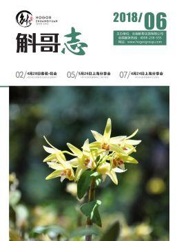 斛哥志企业月刊(2018.6)