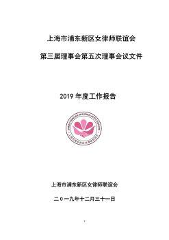 浦东女律联2019年工作总结电子宣传册