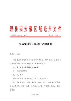 亳州字 【2020】8号 关落实3•15专项行动的通知.pdf_5e5a274983385e55f3eda8b1电子宣传册