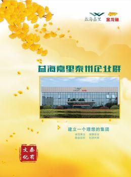 【泰有文化】泰州企业群201711-12企业文化之窗电子画册