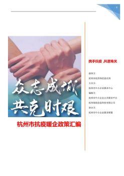 杭州市抗疫暖企政策汇编(分类版)杭州市中小企业服务中心 绿纽科技电子书