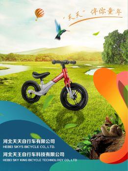 河北天天(天王)自行車有限公司產品畫冊2019 電子雜志制作平臺