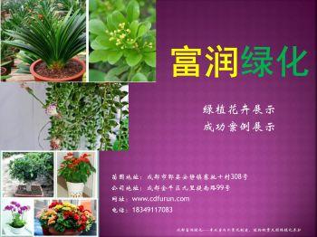 成都植物租摆公司——成都富润绿化电子画册