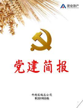 开封建业·党建简报 第201903期电子宣传册