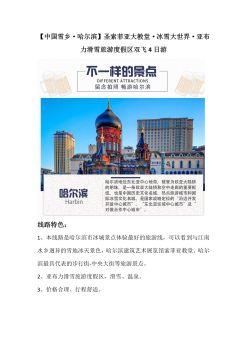 哈尔滨电子宣传册