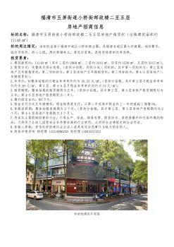 福清市玉屏街道小桥街邮政楼二至五层房地产招商信息宣传画册