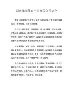 湖南元城STP全单组分湿固化聚氨酯弹性跑道宣传画册