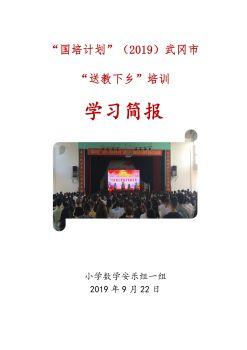 武冈市送教下乡小学数学安乐组国培简报_电子书
