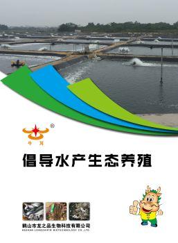 龙之品产品图册