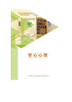 湖南智心心理科教设备有限公司电子画册