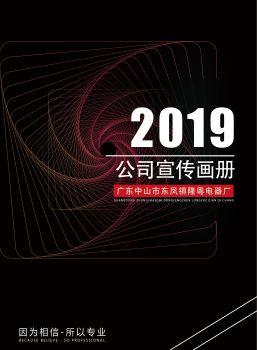 广东中山市东凤镇隆粤电器厂电子宣传册