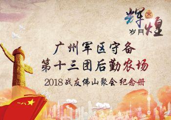 2018广州军区守备第十三团农场战友佛山聚会电子杂志