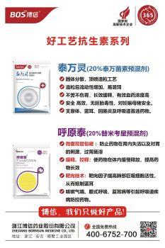 博信好工艺抗生素系列电子画册