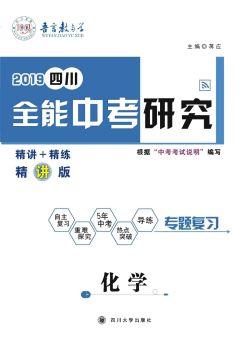 2019四川中考《全能中考研究 化学》精讲 专题复习电子书