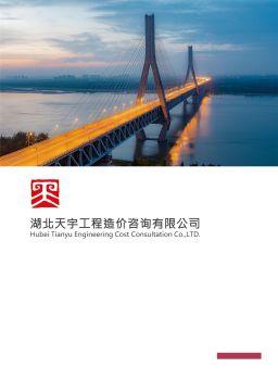 湖北天宇公司宣傳冊2019版