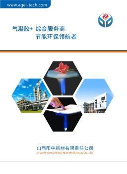 山西阳中新材有限责任公司(宣传册)