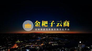 金耙子云商产品宣传册(商家版本2.0改版)