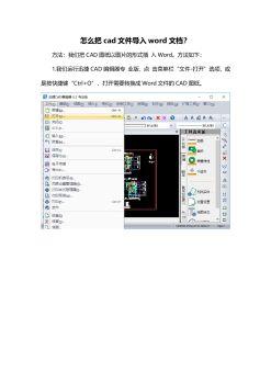 怎么把cad文件导入word文档?,FLASH/HTML5电子杂志阅读发布