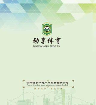 云南动享体育产业发展有限公司电子画册