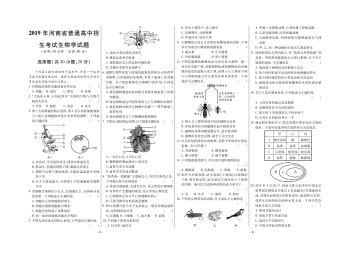《中考对策》2019-2021河南中考真题试卷电子书