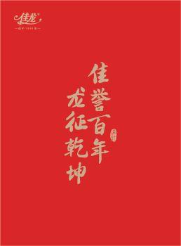 佳龙企业画册