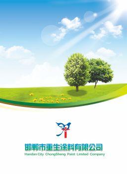 邯郸市重生涂料有限公司电子画册