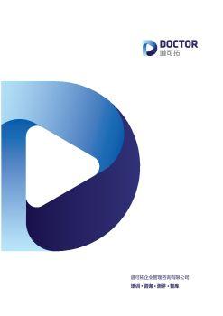 道可拓咨询企业版产品手册