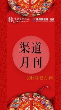 渠道月刊(12月刊)