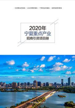 2020年宁夏重点产业招商引资项目册 电子书制作软件