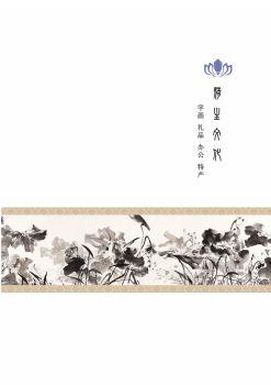 河南荷生文化发展有限公司电子画册