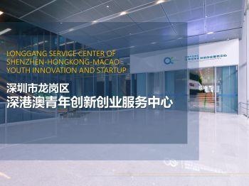 深圳市龙岗区深港澳青年创新创业服务中心(20190625,殷雅洁) 电子书制作平台