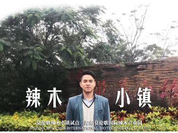 海南辣木健康小镇-陈立新电子刊物