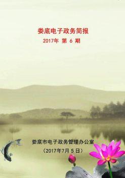 娄底电子政务简报2017年第6期(总第14期