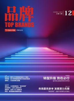 《品牌》杂志第12期 电子书制作软件