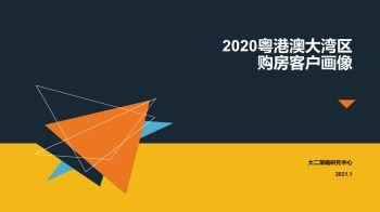 试读:2020粤港澳大湾区购房客户画像宣传画册