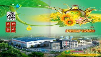 盛世嘉禾产品宣传图册