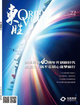 《东胜》总第22期宣传画册