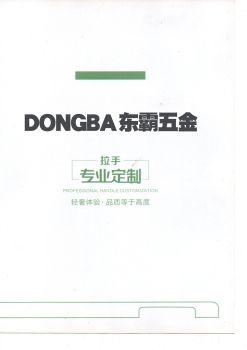DONGBA东霸五金 电子书制作软件