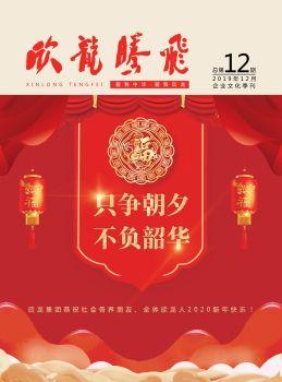 《欣龙腾飞》企业文化季刊第12期电子刊物