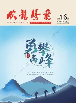 《欣龙腾飞》企业文化季刊第16期电子刊物