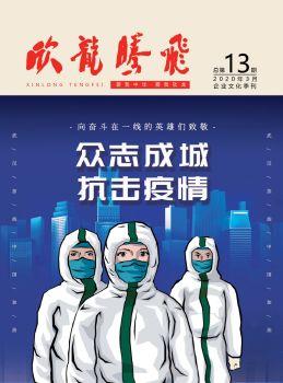 《欣龙腾飞》企业文化季刊第13期电子刊物