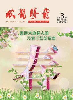 《欣龙腾飞》企业文化季刊第3期电子刊物