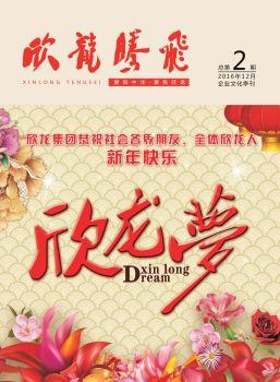《欣龙腾飞》企业文化季刊第2期电子刊物