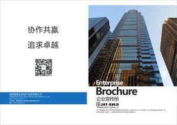 企业宣传画册(有页码)