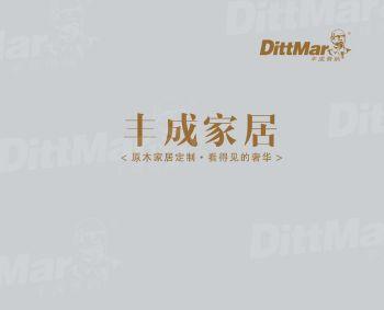 丰成帝纳-电子画册 电子书制作软件
